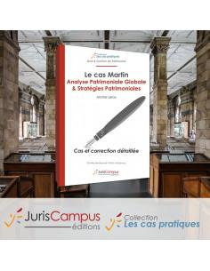 Le cas Martin : Analyse Patrimoniale Globale & Stratégies Patrimoniales