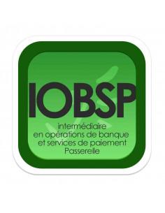 Intermédiaire en Opérations de Banque et Services de Paiement - PASSERELLE (Livret de formation ORIAS)